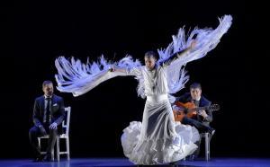 El coreógrafo y bailaor Manuel Liñán.