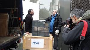 Los fondos de la exposición llegaron este lunes al Centro Lorca.