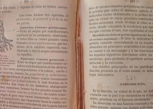 Libro censurado. Este era el libro Historia Natural de García Álvarez que se utilizaba como texto de alumnos en el Sacromonte y en el Instituto de Granada. Fue utilizado entre los años 1867 y 1872; a partir de la condena arzobispal, varias páginas (de las 265 a 318) fueron cortadas para que los alumnos no tuvieran acceso a sus contenidos.