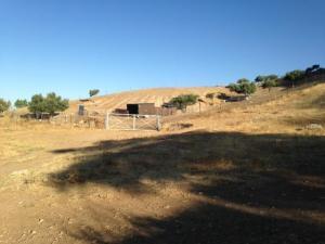 El polémico redil para el ganado habilitado en una zona de fosas en Alfacar.