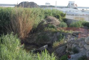 Lugar en el que Ecologistas ha detectado el vertido.