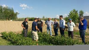 Visita a una de las plantaciones afectadas.