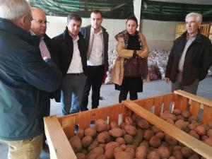 Responsables políticos y empresariales, junto a patatas de Güéjar Sierra.