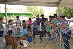 Ordeño de cabras en la pasada edición de la feria.