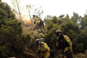 Bomberos forestales actúan en un incendio.