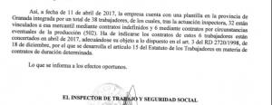 Detalle de la resolución de Inspección de Trabajo.