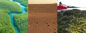 El proyecto pretende mapear el microbioma de la tierra.