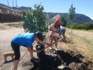 La actividad finalizó con la plantación de árboles.