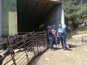 El delegado, en su visita a la explotación ganadera de Jesús López.