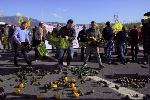 En la protesta han participado representantes de COAG Granada, Málaga y Almería.