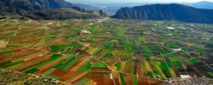 El Llano de Zafarraya, la mayor huerta de la provincia.