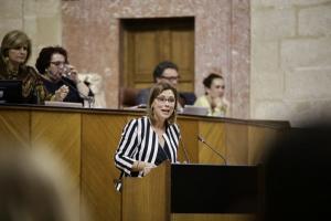 Mar Sánchez en una intervención en el Parlamento.