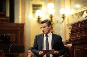 El diputado granadino de Cs en el Congreso, Luis Salvador.
