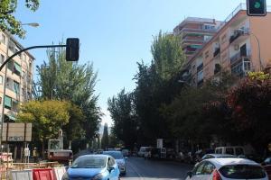 Árboles en la antigua Carretera de Málaga.