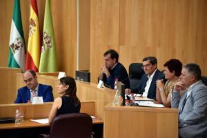 Entrena preside la segunda reunión del Consejo de Alcaldes de la provincia.
