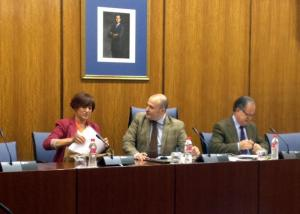 Marina Martín en la comisión de investigación.