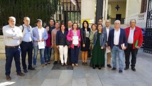 Olga Manzano, junto a los alcaldes socialistas, ante la Subdelegación del Gobierno.