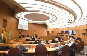 Pleno de la corporación provincial.