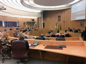 Pleno extraordinario de la Diputación.