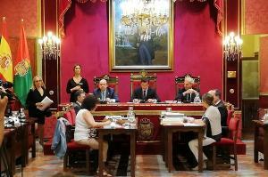 Imagen del primer pleno ordinario del mandato.