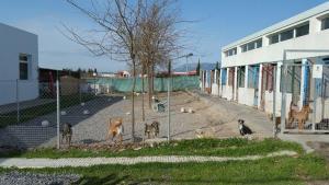 Según IU, en la provincia hay medio centenar de asociaciones que realizan esta labor desinteresadamente.