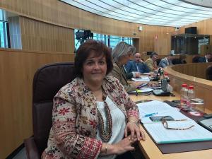La diputada provincial del PP Soledad Martínez.