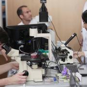 Mirar por microscopios es obligado en un recinto científico.