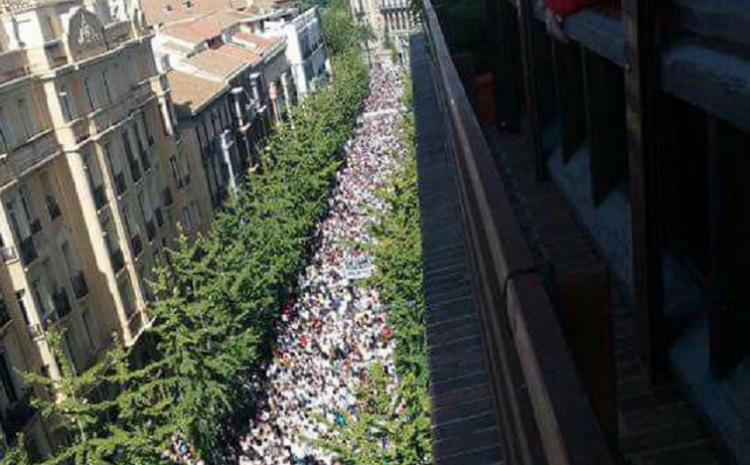 Multitudinaria manifestación contra la fusión hospitalaria del 16O.