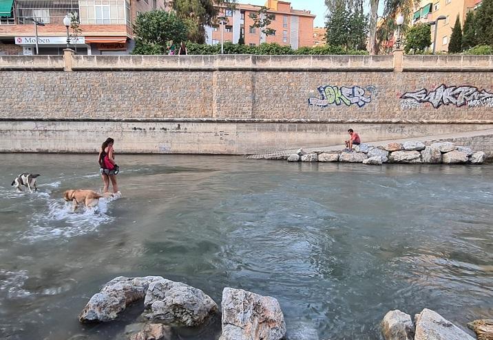 El río Genil, un lugar donde refrescarse de las altas temperaturas.