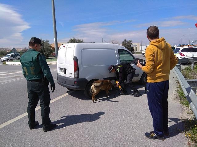 Un perro de la unidad canina inspecciona un vehículo.