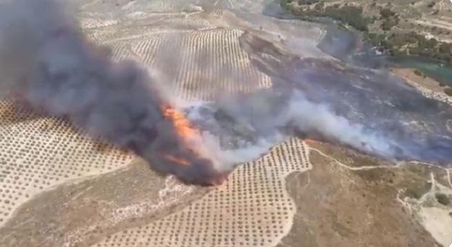 Imagen extraída de un vídeo del Infoca donde se ve la virulencia de las llamas.