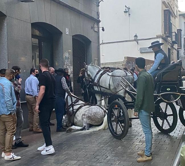 El accidente ha ocurrido a la entrada de la calle San Matías.