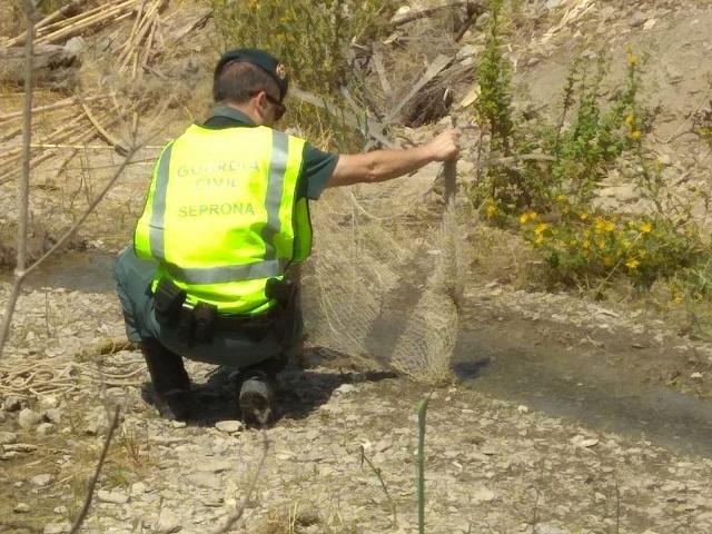 Redes usadas para capturar los jilgueros en el río Jate.