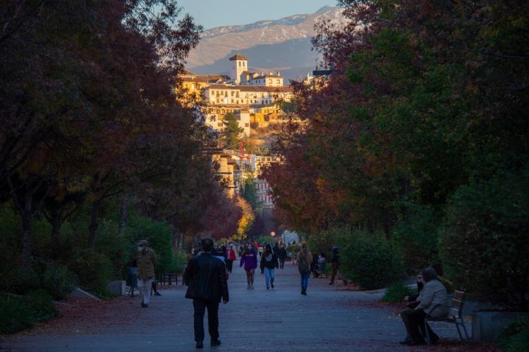 Bella imagen de la Avenida de la Constitución con el Albaicín al fondo.