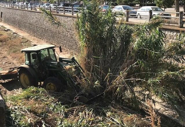 Eliminación de vegetación en el cauce del río Monachil, en el Zaidín.
