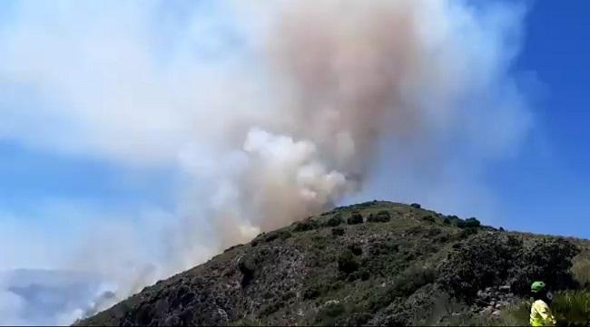 Imagen de la zona en la que se ha declarado el incendio.