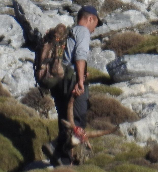 El cazador lleva la cabeza de un macho montés.