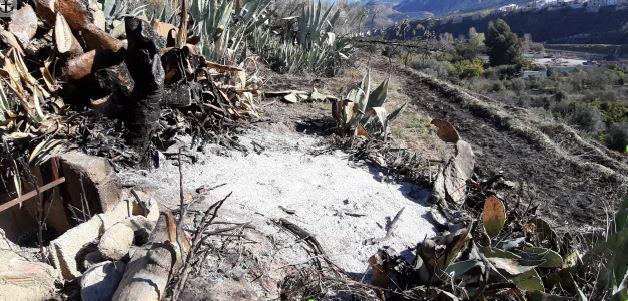 El incendio quemó 6.000 metros cuadrados de vegetación.