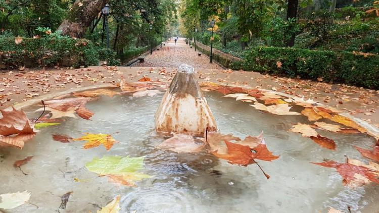 Fuente del Pimiento, el bosque de la Alhambra, este jueves.