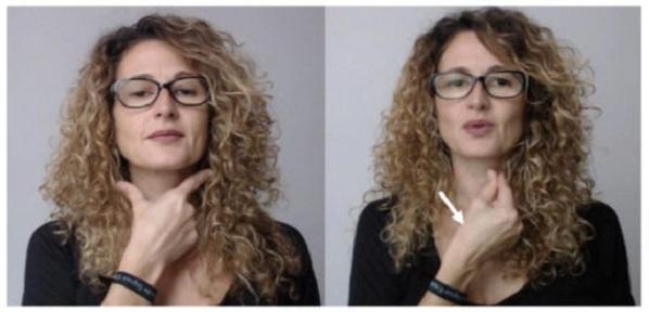 Imagen extraída del curso de lengua de signos.