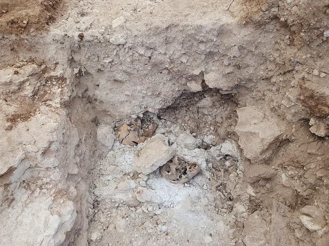 Imagen en la que se aprecian parte de los restos localizados.
