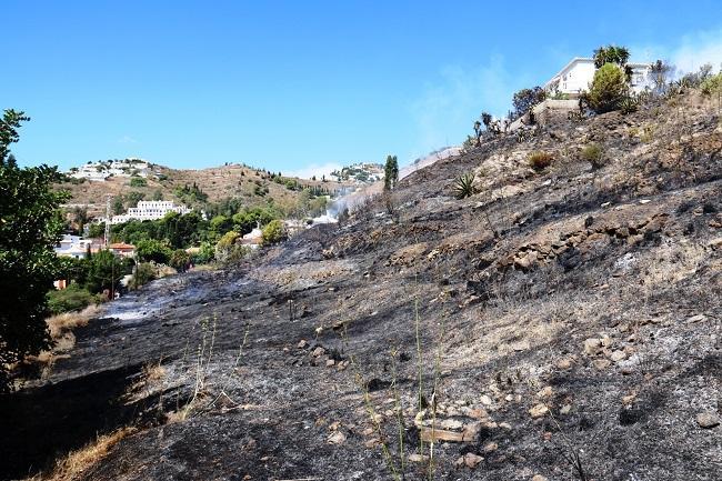 Vista de la parcela afectada por el incendio.