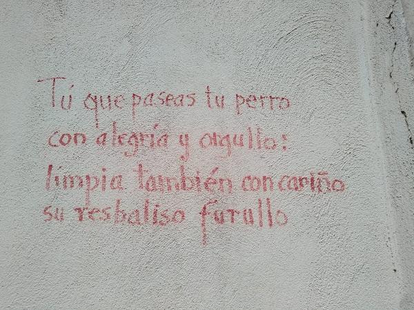 Pintadas en el Albaicín denunciadas por los vecinos.
