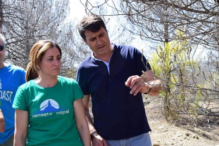 La delegada de Medio Ambiente y el alcalde de Baza examinan el estado de los pinos.