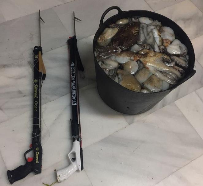 Pulpos y fusiles empleados en su pesca.