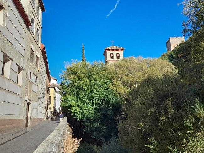 La Iglesia de San Pedro, tapada por la vegetación.
