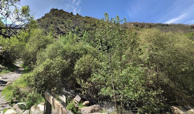 Nuevo rescate, esta vez en Güéjar Sierra.