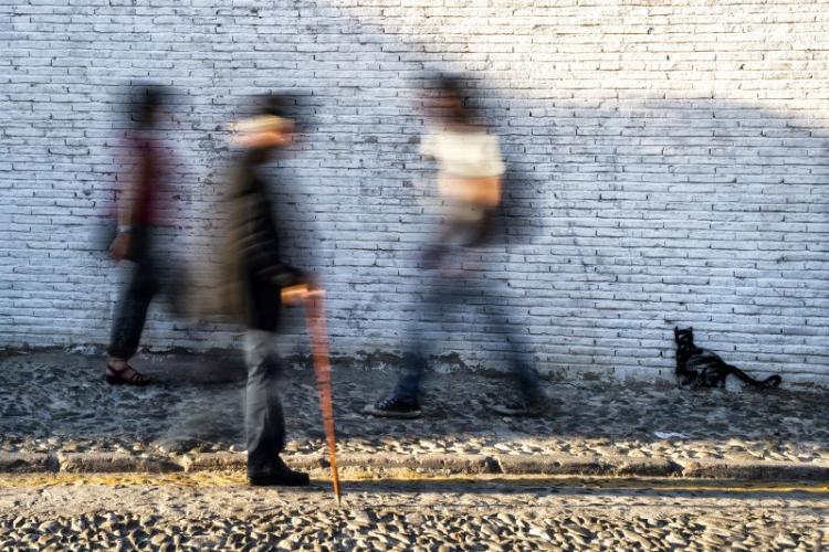 'El observador silencioso', fotografía ganadora del Premio Albayzín.