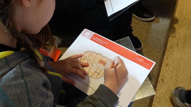 Una niña participa en uno de los talleres.