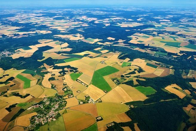 Graniot, una de las empresas seleccionadas, ofrece información geoespacial de cultivos.